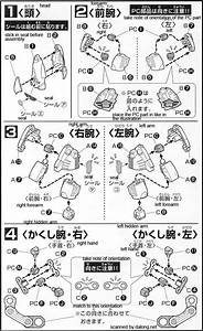 Sd The O English Manual  U0026 Color Guide