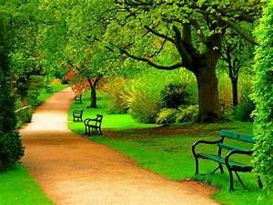 Green, Park, Trees, Nature, Beautiful, Day, Hd, Wallpaper, 1871
