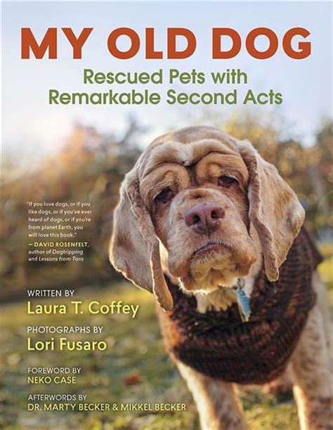 Favorite Books For Animal Lovers Of All Ages Huffpost