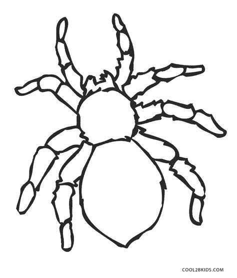 printable spider coloring pages  kids coolbkids