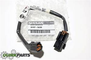 2005 Nissan Quest Wiring Harness