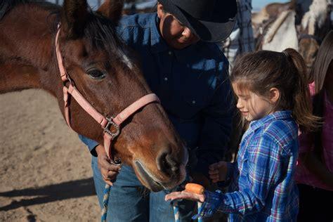 horseback phoenix riding equestrian center whp trail rides