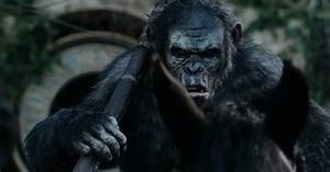 Dawn Of The Planet Of The Apes Caesar Son - wallpaper.