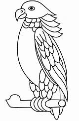 Parrot Sisserou Coloring Pages Printable A4 Categories Birds sketch template