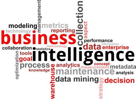 vector windows reviews what you need to about business intelligence