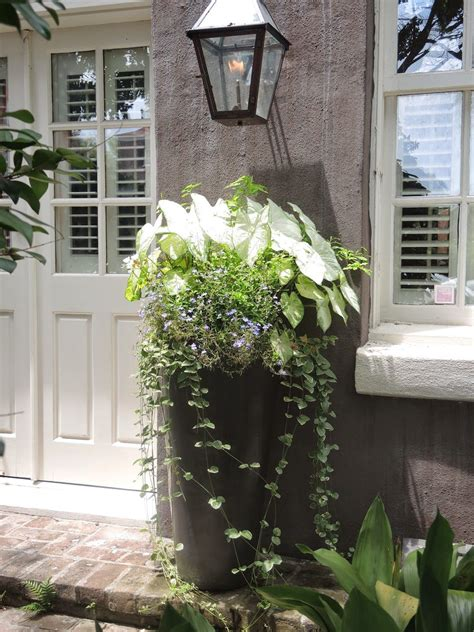 tall entrance porch planter white green charleston sc