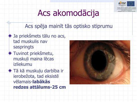 PPT - Cilvēka redze PowerPoint Presentation, free download ...