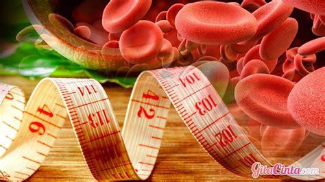 10 gram daun sambiloto kering 3. Bagaimana Cara Kerja Diet Sesuai Golongan Darah ...