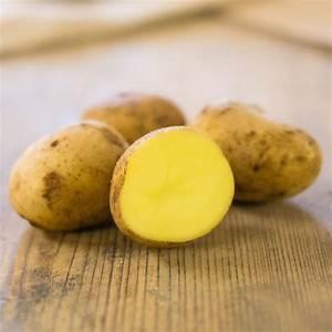 Kartoffeln Zum Einkellern Kaufen : kartoffel kaufen kartoffelhof h rtl speisekartoffeln ~ Lizthompson.info Haus und Dekorationen