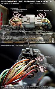 2005 Honda Civic Hybrid Wiring Harness