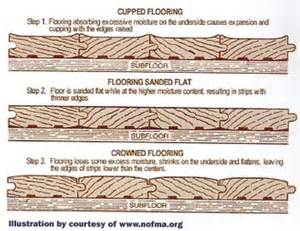 water damaged flooring water damage mold removal blog