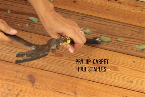 Hardwood Floor Staple Remover Tool by Our Most Used Tool So Far The Pry Bar