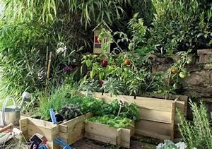 Quand Planter Lavande Dans Jardin : soci t cr er un jardin potager naturel ~ Dode.kayakingforconservation.com Idées de Décoration