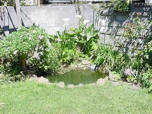 Parasol De Jardin : c mo armar un estanque en el jard n una misma dise o jardin jardin paisajismo flor de planta ~ Teatrodelosmanantiales.com Idées de Décoration