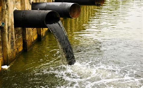 the water pollutants and the protection of the water from the pollution science
