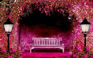 Spring Garden Wallpapers