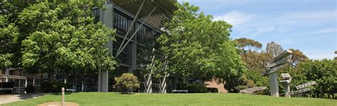 lilydale lakeside campus courses box hill institute