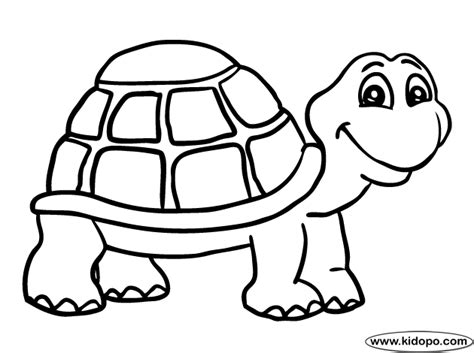 turtle coloring pages turtle  coloring page animal