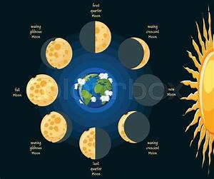 Basic Moon Phases Diagram  Cheese Moon