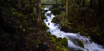 River Flowing Animated Lowgif Wifflegif Gifs Water