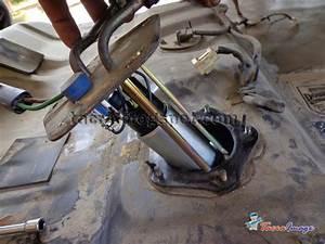 Tacra U0026 39 S Diy Garage  Deatsch Werks  Dw200  Fuel Pump