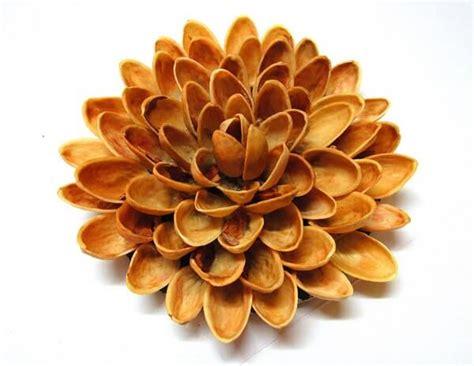 diy learn   fridge magnet  pista shells