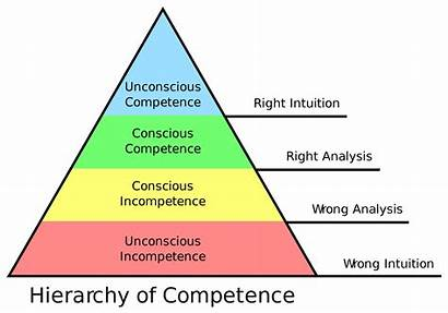 Dunning Kruger Effect Competence Stages Four Does