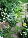 1000+ ideas about Stone Walkways on Pinterest | Walkways shade garden path ideas