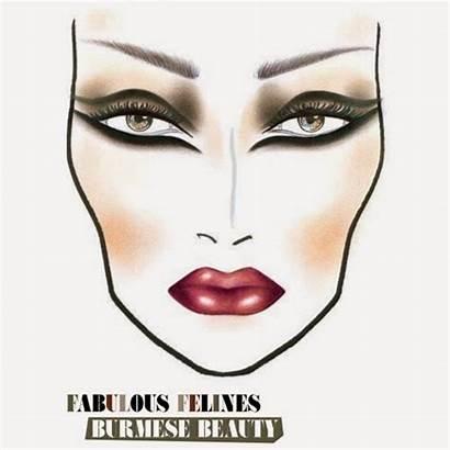 Face Chart Mac Makeup Beauty Fabulous Felines