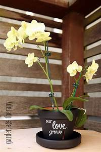 Instructions On How To Make A Chalkboard Paint Orchid Pot