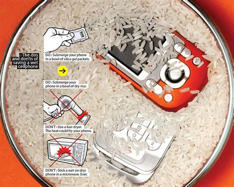 what to do on your phone how to save and repair your mobile phone after water damage