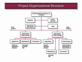 Chap 3 Organization Structure