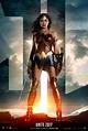 Wonder Woman's armor | DC Extended Universe Wiki | FANDOM ...
