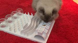 Trixie Pet Fun Board For Wet Food