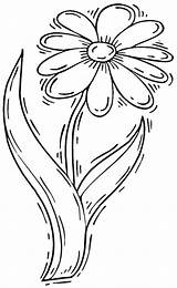 Coloring Flower Daisy Clip Vase Drawing Easy Library Columbine Cartoon sketch template