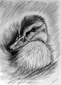 41 best drawing images on Pinterest | Charcoal drawings ...