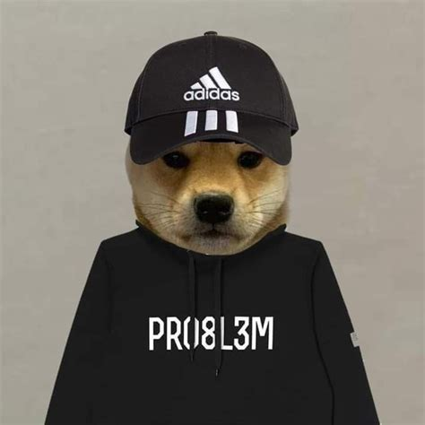 Pin By Clapped On Shiby Dog With Hat Dog With Hat Pfp