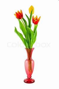 Tulpen In Vase : bunte tulpen in einer vase auf einem stockfoto colourbox ~ Orissabook.com Haus und Dekorationen