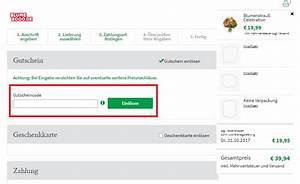 Wie Kann Ich Steuern Sparen : blume2000 gutschein top aktion m rz 2018 ~ Orissabook.com Haus und Dekorationen