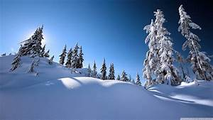 Beautiful Winter Scenery Wallpaper