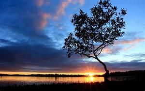 Beautiful Sunset Scenery