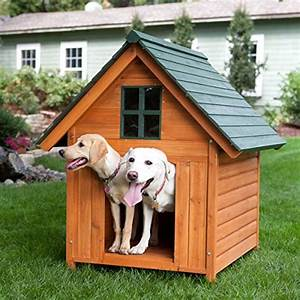 10 dog houses that will make humans and dogs drool with With super large dog kennel