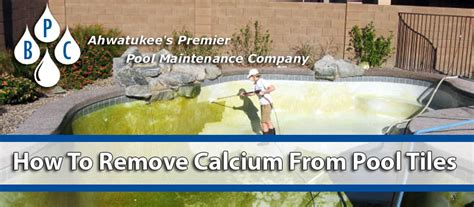 how to remove calcium from pool tiles fast bpc pool