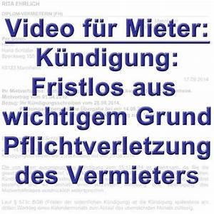 Mieter Kündigen Ohne Grund : videos mit themen f r mieter k ndigung u a ~ Lizthompson.info Haus und Dekorationen
