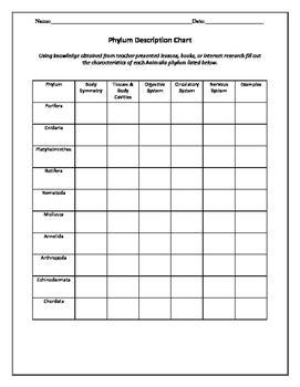 biology classification worksheet biology taxonomy and classification worksheets tpt