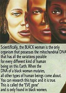 25+ best ideas about Mitochondrial Eve on Pinterest ...
