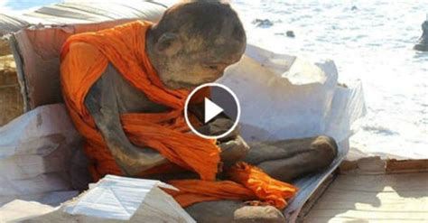 mummified monk   dead   rare meditative state