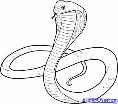 Cobra Coloring Pages Snake Cartoon Printable Getcolorings