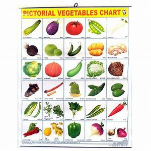 Image for All Vegetables Names In English | Places to ...