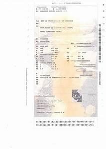 Puissance Din Carte Grise : le certificat d 39 immatriculation ou carte grise ~ Gottalentnigeria.com Avis de Voitures
